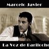 La Voz de Bariloche, suena en Stereofilia Radio.