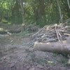 Fotografías del desastre ambiental en Zapotillal, Guanacaste