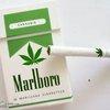 ¿ Legalizar o seguir en prohibición ?