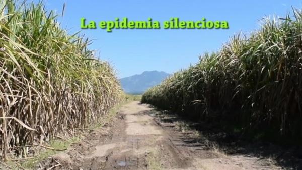 Epidemia_large