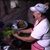 Moringa: Una Solución De Seguridad Alimentaria Al Cambio Climático