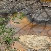 La Amenaza De La Minería Persiste En El Salvador