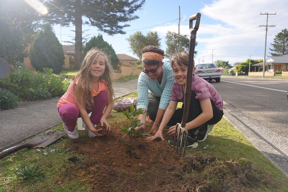 Tree Planting Projects | uminabeach.com.au