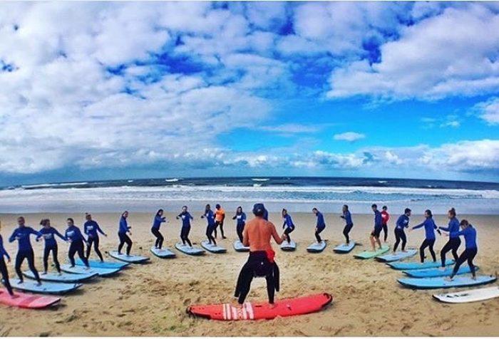 Umina Beach Surfing Facts   uminabeach.com.au