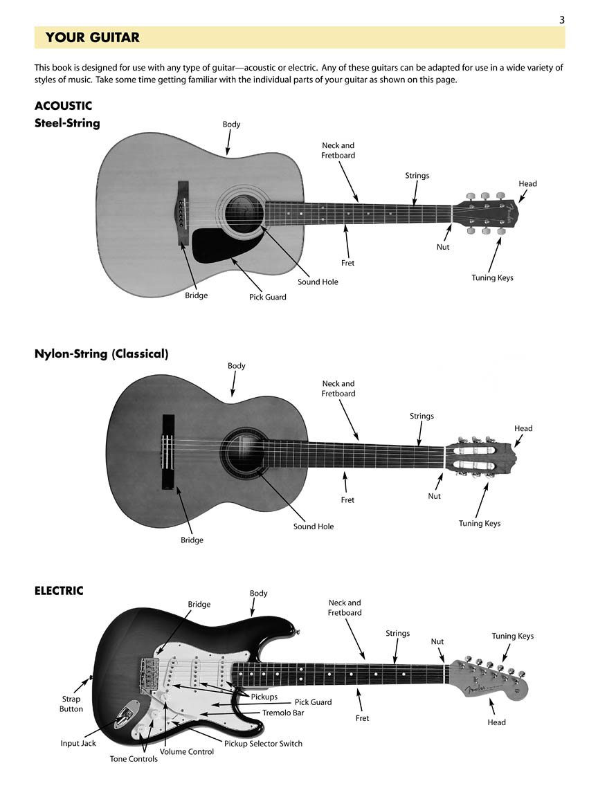 the essential construction components of the guitar Parts of the guitar fret hand techniques – building a solid foundation essential for beginner guitar.