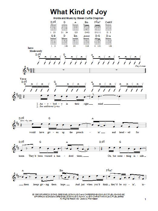 Tablature guitare What Kind Of Joy de Steven Curtis Chapman - Autre