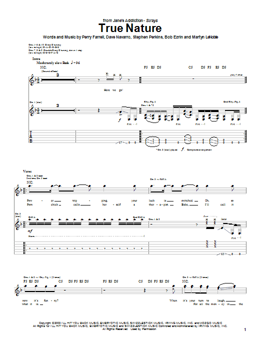 True Nature sheet music for guitar solo (tablature) by Stephen Perkins