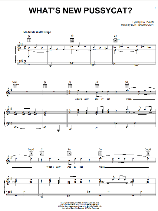 What's New Pussycat? sheet music for voice, piano or guitar by Hal David