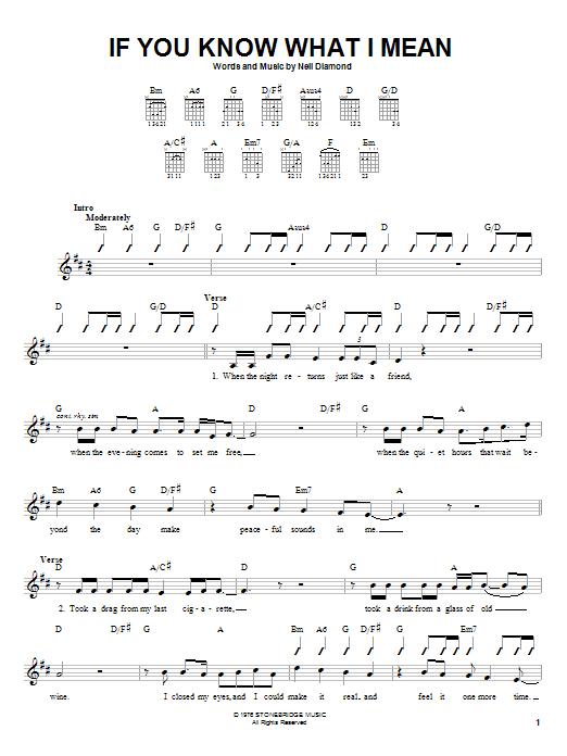 Tablature guitare If You Know What I Mean de Neil Diamond - Autre