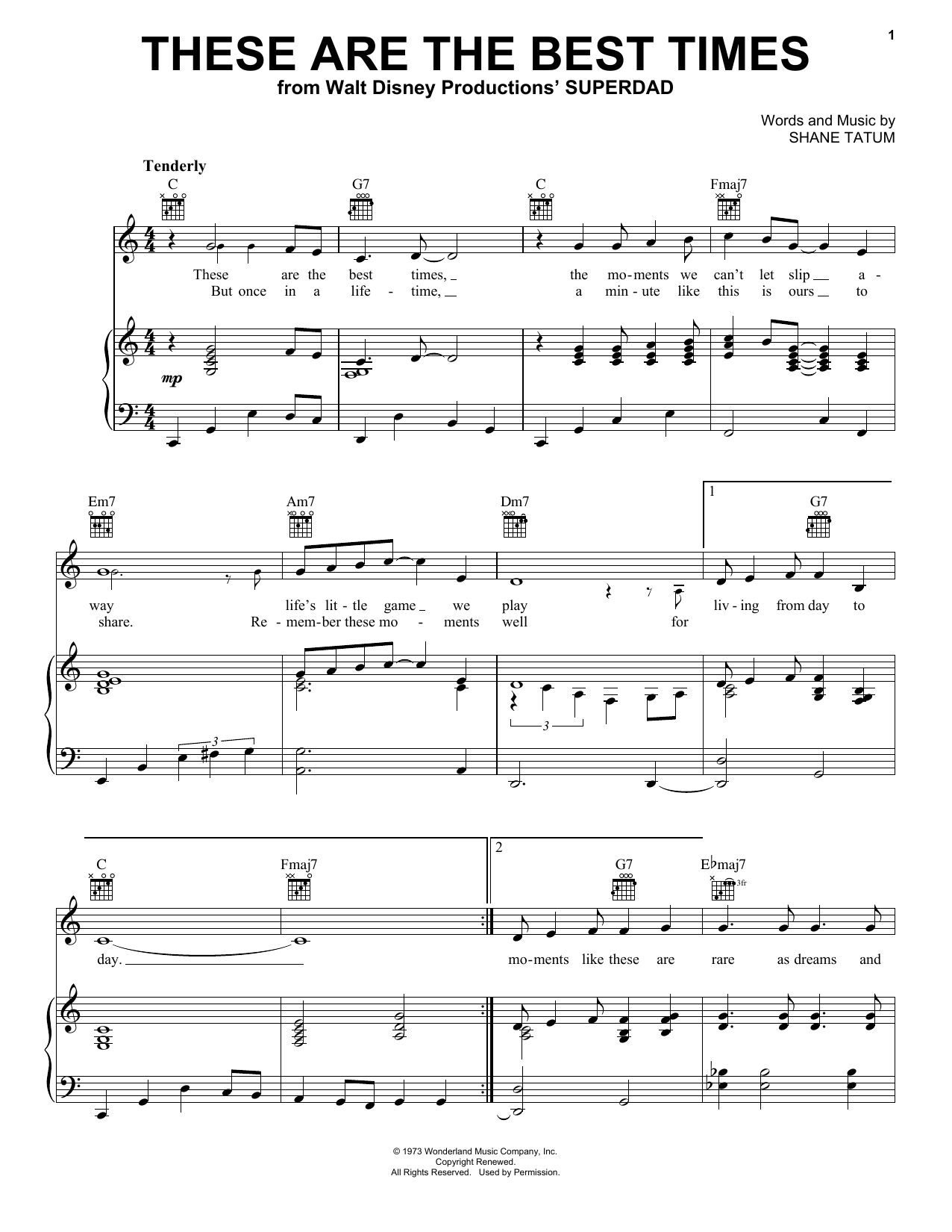 These Are The Best Times sheet music for voice, piano or guitar by Shane Tatum