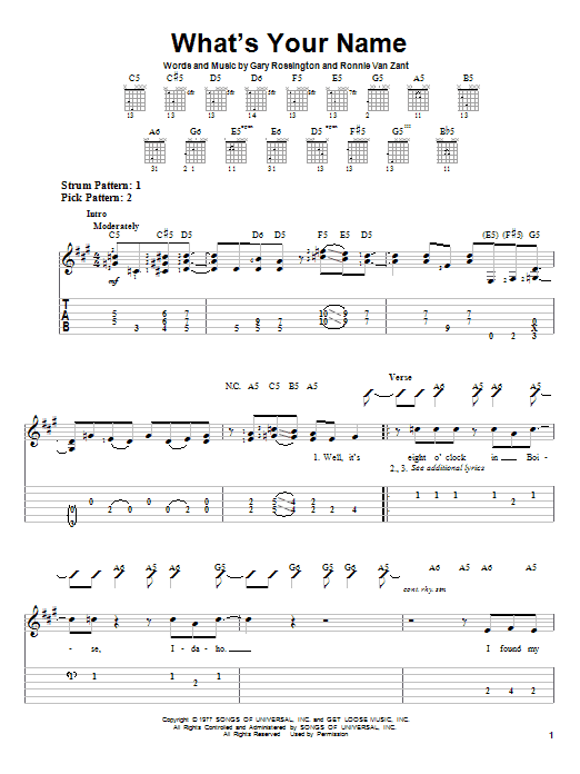 Tablature guitare What's Your Name de Lynyrd Skynyrd - Tablature guitare facile