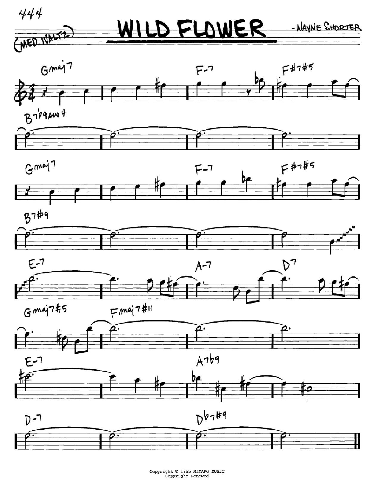 Partition autre Wild Flower de Wayne Shorter - Real Book, Melodie et Accords, Inst. En Mib