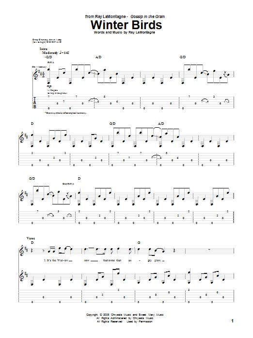 Tablature guitare Winter Birds de Ray LaMontagne - Tablature Guitare