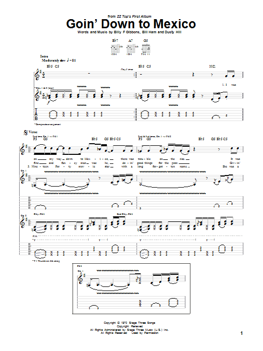 Goin' Down To Mexico sheet music for guitar solo (tablature) by Dusty Hill