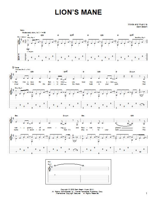 Tablature guitare Lion's Mane de Iron & Wine - Tablature guitare facile