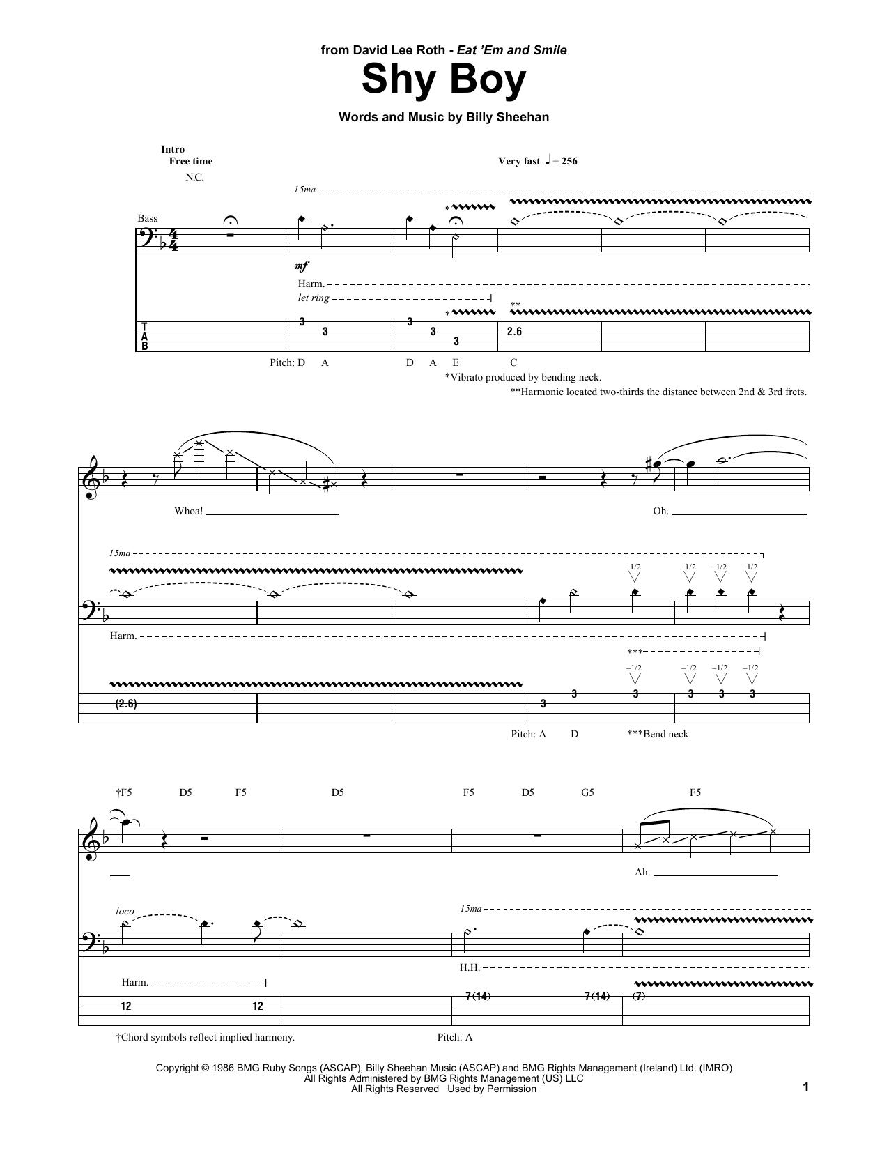 Tablature guitare Shy Boy de David Lee Roth - Tablature Basse