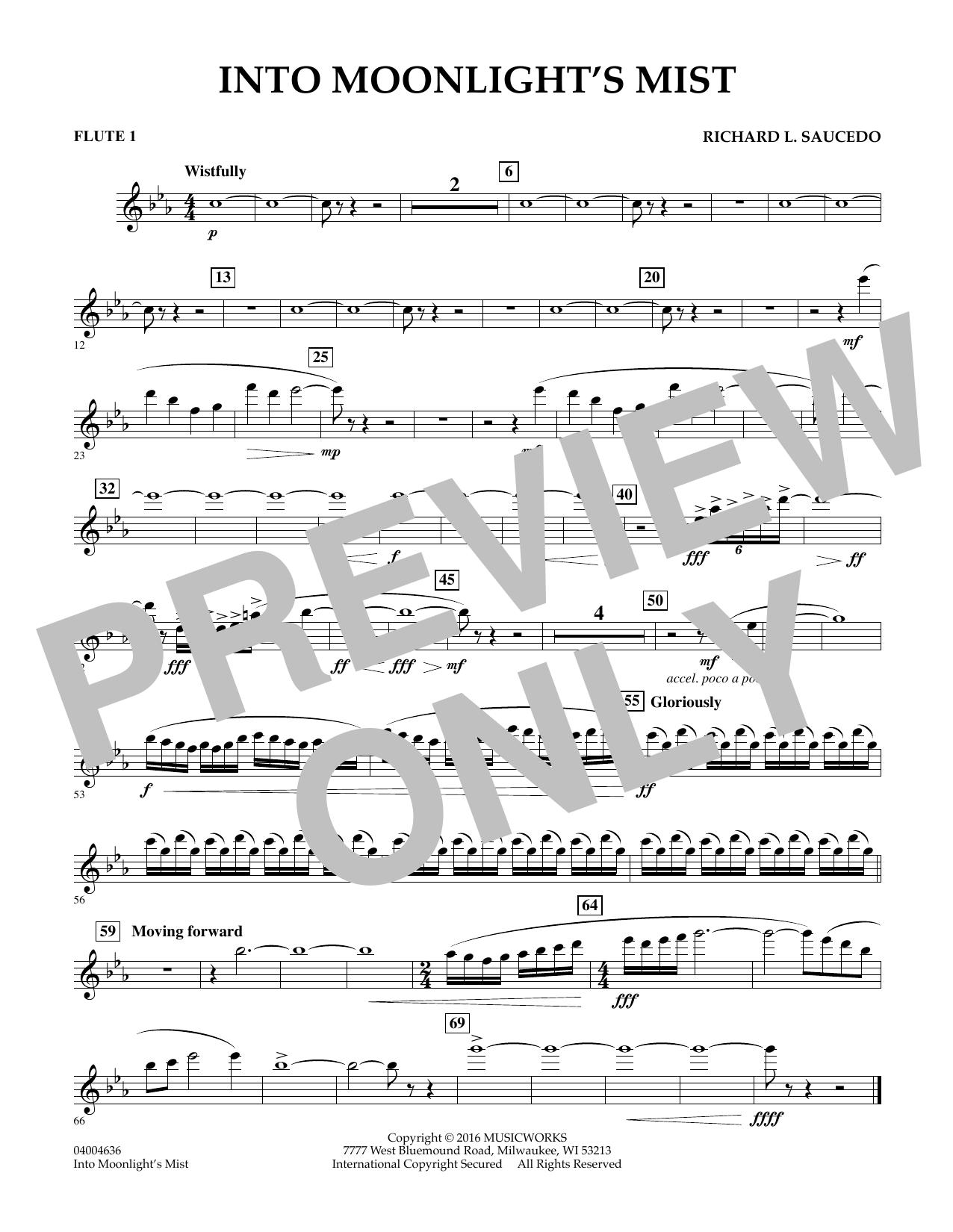 Into Moonlight's Mist - Flute 1