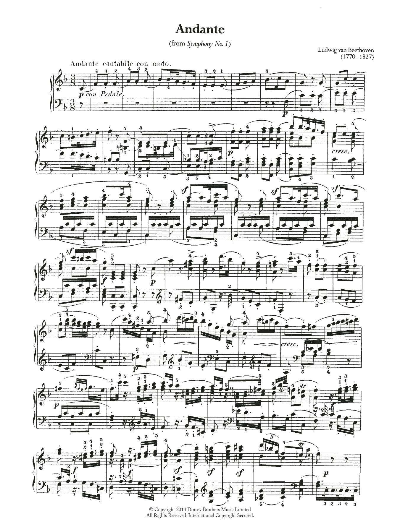 Ludwig van Beethoven - Symphony No.1, Andante