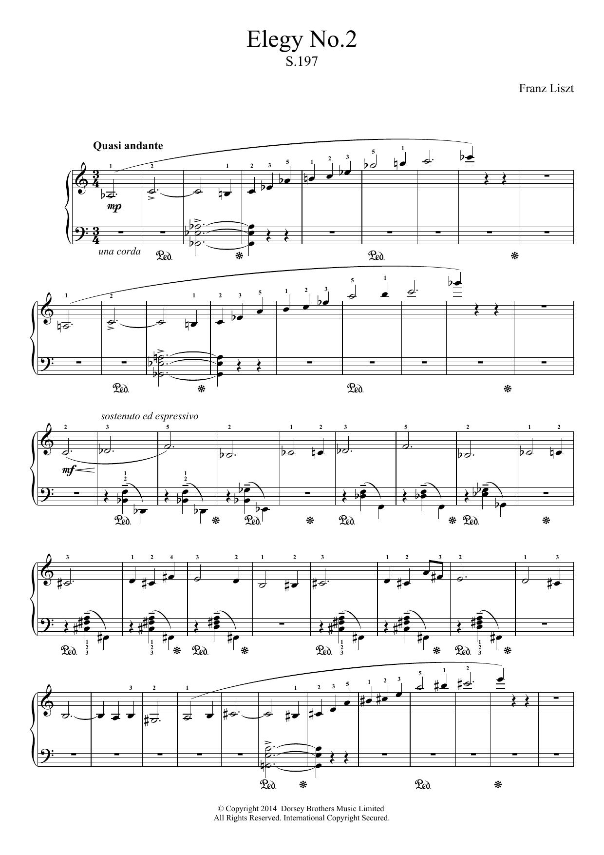 Franz Liszt - Elegy No.2