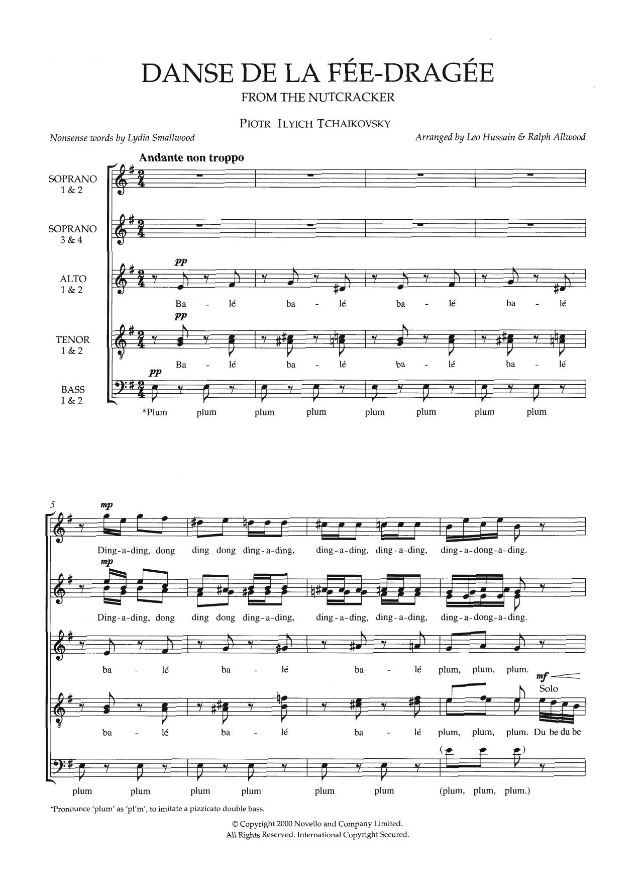 Pyotr Ilyich Tchaikovsky - Dance Of The Sugar Plum Fairy (From The Nutcracker) (arr. Leo Hussain and Ralph Allwood)