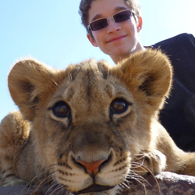 Met a very cute lion on my recent trip to South Africa