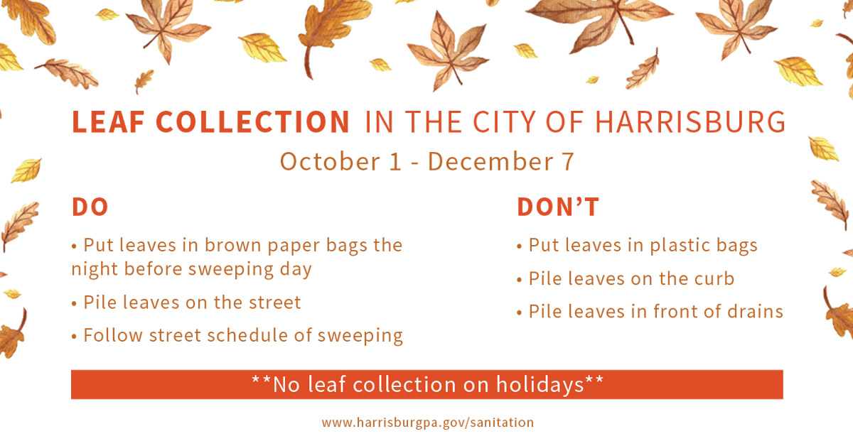 Leaf Collection Dos and Don'ts