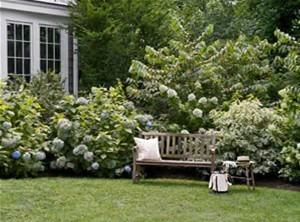 Design-Less Gardens