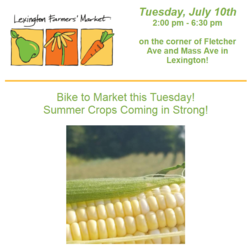 Lexington Farmers' Market Tuesdays 2:00 - 6:30 pm