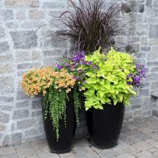 Jaw Dropping Container Gardens