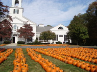 The Pilgrim Pumpkin Patch is Open!