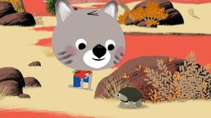 Vidéo - Le désert des tortues