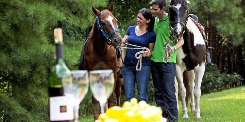 Couple horseback riding and picnic