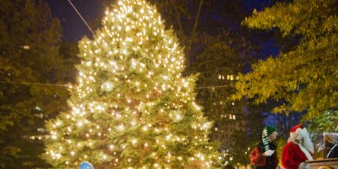 Edmondson-Telford Angel Tree Lighting