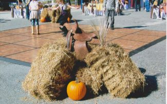 Save The Horses Fall Festival and Fundraiser