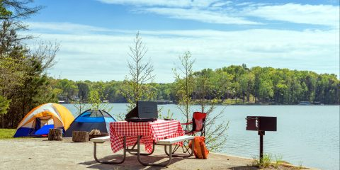 Campground Discount Offer