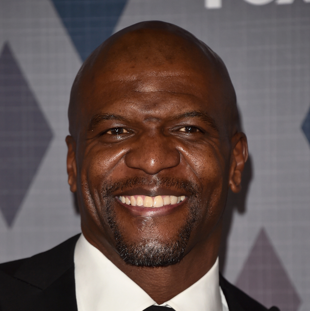 terry crews robot