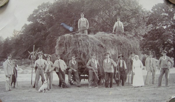 Haymaking at Wyken