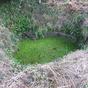 The leper's well, Codsall Wood