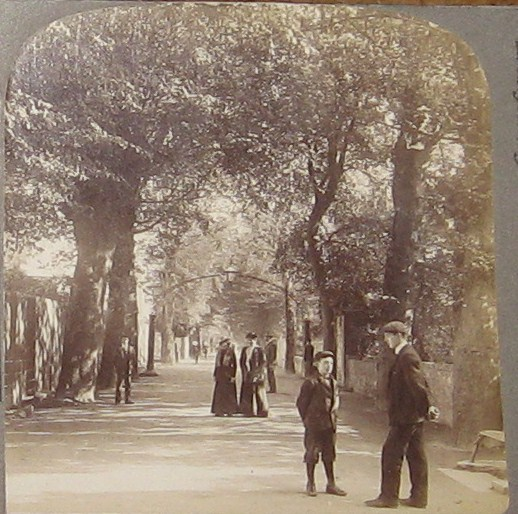Mardyke walk Cork
