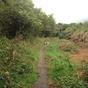 Green Lane from Cranmoor, Perton