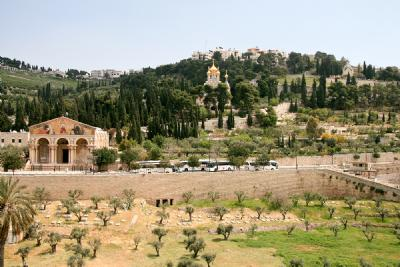 Mount of Olives (5 folders)