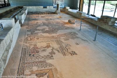 Sepphoris Synagogue Mosaics