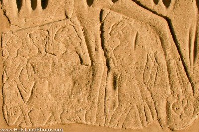 Settlement in Canaan 113-130