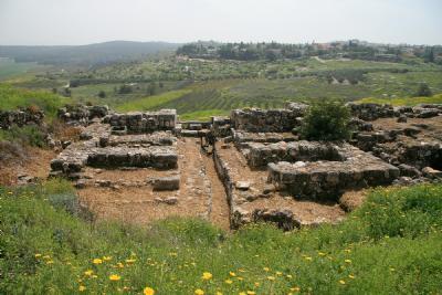 David and Solomon 138�9