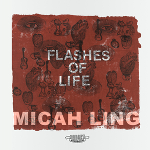 Flashes of Life cover