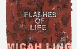 Flashes of Life photo