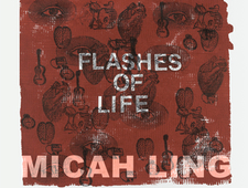 3 Poems from Flashes of Life photo
