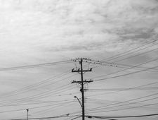 Power Lines photo