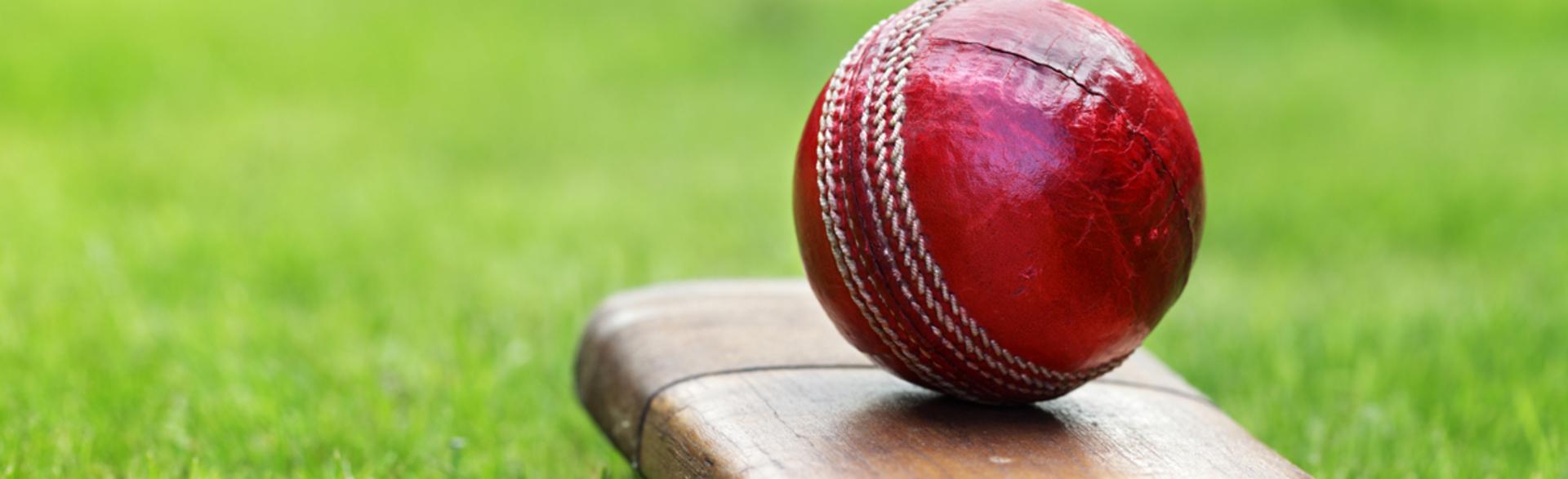 Banner   junior cricket