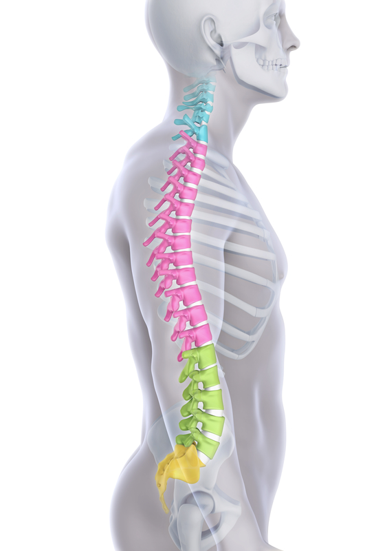 Back pain causes and relief